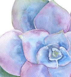 Blue Succulent Watercolor Painting 8 x 10 Giclee by SusanWindsor