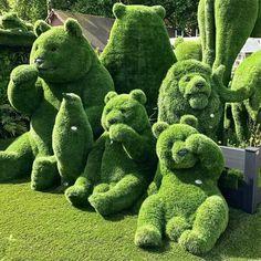 Topiary bears