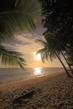 ☀ I wish I was here....sunrise on the beach under the palm trees