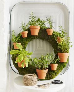 7 Creative DIY Indoor Herb Garden Designs You're Sure to Love