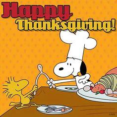 Feliz Ação de Graças Grigos!