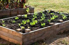Pallet garden bed plans