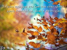 Psygrams Ideas in words Greek Quotes, Inspirational, Words, Horse