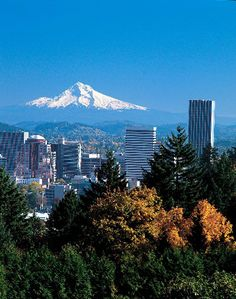 Portland viewed from the Forest Park (largest urban park in the US) looking over downtown at Mt Hood