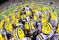 If LSU wins out, they will make the College Football Playoff Lsu Tigers Football, Football Tops, College Football, Football Helmets, Death Valley Lsu, Lsu Game, Tiger Stadium, Louisiana State University, Sports Fanatics