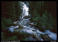 Hidden Falls, stream, and forest. Grand Teton National Park, Wyoming