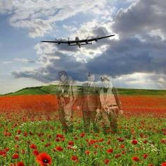Real-life heroes don't all wear capes and diffuse bombs. These eight people saved the world in snap-decisions or through years of hard work. Remembrance Day Pictures, Remembrance Day Poppy, Armistice Day, Flanders Field, Anzac Day, Battle Of Britain, Lest We Forget, Military Art, Veterans Day