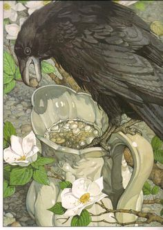 "Crows Ravens:  ""#Crow and the Pitcher,"" by Don Daily."