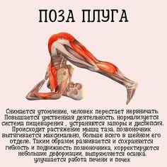 Йога-тайм | OK.RU Yoga Mom, My Yoga, Health And Wellness, Health Fitness, Pilates Workout, Excercise, Workout Videos, Yoga Fitness, Yoga Poses