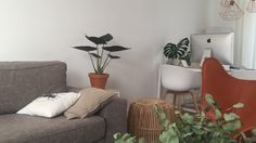 Green inspiration in our living room.