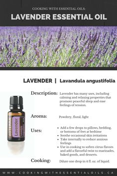 Lavender has been used and cherished for centuries for its unmistakable aroma and myriad benefits. In ancient times, the Egyptians and Romans used Lavender for bathing, relaxation, cooking, and as a perfume. Its calming and relaxing qualities, when taken internally, continue to be Lavender's most notable attributes. #lavender #doterra #cookingwithessentialoils