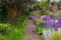 Block planting can create strong lines and interest in any area especially along a pathway Garden Images, Garden Borders, Pathways, Planting, Stepping Stones, Gardens, Strong, Create, Outdoor Decor