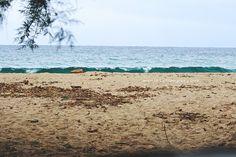 plage vague surf corse