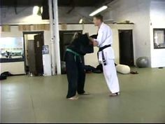 Bushido Jiu Jitsu - Armbar, Flying Techniques