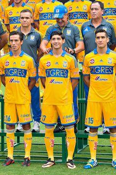 Los Tigres de la UANL se tomaron la foto oficial para el Torneo Apertura 2013 de la Liga MX.