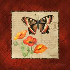 Butterfly & Poppies Art Print