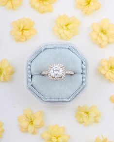 CaiSanni | Kultasepänverstas (@caisanni) • Instagram-kuvat ja -videot Halo, Stud Earrings, Instagram, Beautiful, Jewelry, Jewellery Making, Jewerly, Jewelery, Stud Earring