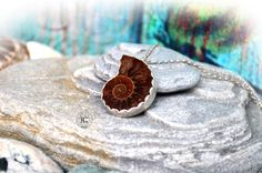 Ammonite Silver Pendant, Fossil 925 Silver Pendant, Size 26 x 20 mm, Dinosaur Age Fossils, Handmade Boho Silver Pendant, Nautiloid Pendant de hecatecrea en Etsy https://www.etsy.com/es/listing/249261392/ammonite-silver-pendant-fossil-925