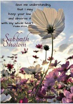Shabbat Shalom ~ Psalm 119:34