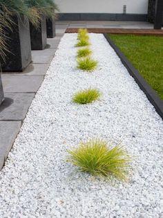 Yellow Sun, Backyard Patio Designs, Celebration Quotes, Shade Garden, Sidewalk, Outdoor, House, Gardens, Decorative Pebbles