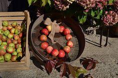 Jesenné dekorácie - Adriana-Repiska-8
