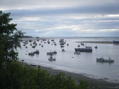 South Naknek, Alaska I have seen this in person amazing