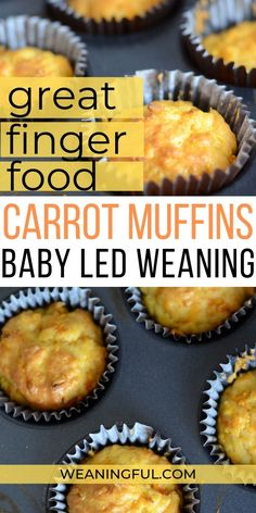 Carrot muffins (a BLW This baby led weaning carrot muffins recipe is great when introducing solids because they're soft and full of nutrients for your little one, whether he is a baby just turned 6 months or a picky eater who won't eat his veggies. Baby Muffins, Carrot Muffins, Muffins For Babies, Baby First Foods, Baby Finger Foods, Baby Food Recipes, Gourmet Recipes, Recipes For Babies, Kid Recipes