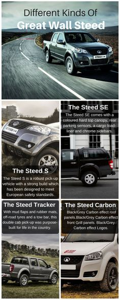 The Different Types Of Great Wall Steed