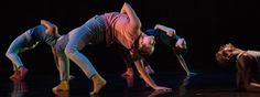 Image result for contemporary dance pieces