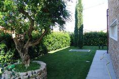giardino moderno