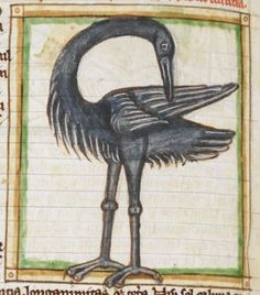 Bird detail from medieval illuminated manuscript, British Library Harley MS Medieval Books, Medieval Life, Medieval Manuscript, Medieval Art, Illuminated Manuscript, Statues, Bayeux Tapestry, Medieval Paintings, Renaissance