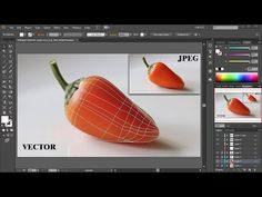 Learn how to apply a gradient mesh to more complex shapes using the rectangle, rotate, lasso, direct selection and mesh tools. Web Design, Graphic Design Tutorials, Tool Design, Graphic Design Inspiration, Vector Design, Adobe Illustrator Tutorials, Photoshop Illustrator, Graphic Design Illustration, Digital Illustration