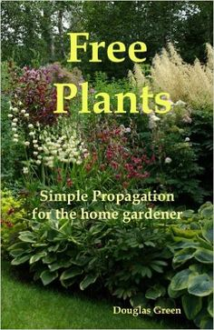 Free Plants - Simple Propagation for the Home Gardener, Douglas Green - Amazon.com