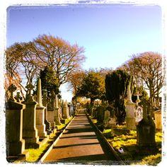 Tours are daily at 11.30am & 2.30pm #IrishHistory #GatheringIreland