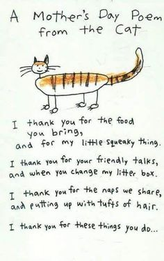 Short, simple, and sweet – these cat sayings are the cherry on top of our resource of cat quotes. See the sheer, undeniable kitty essence immortalized in these 34 quotes for cat lovers. Crazy Cat Lady, Crazy Cats, Cat Poems, Funny Poems, Mothers Day Poems, Happy Mothers, Happy Mom, All About Cats, Tier Fotos
