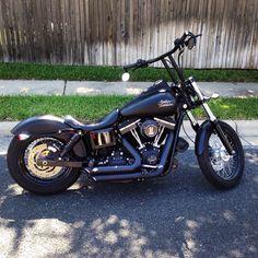 My 2014 Harley Davidson Dyna Street Bob