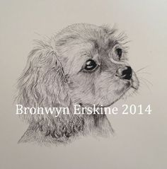 'Ruby' by Bronwyn Erskine illustration
