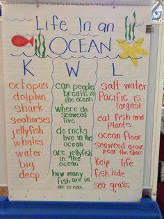 Ocean KWL