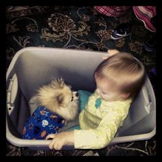 Why dogs are kids best friends