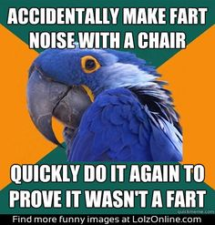 paranoid parrot chair noise