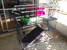 DIY Rabbit / Bunny Cage for cheap | Nothing But Country
