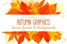 Collection of hand drawn autumn backgrounds and frames with colorful leaves. Autumn leaves frames and backgrounds by anna.kutukova on Creative Market