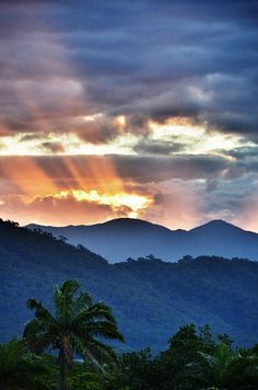 Sunset over the Rainforest, Port Douglas, Queensland, Australia http://www.australiaconferencesandincentives.com/