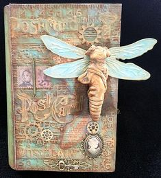 Dragonfly Lady Book