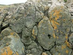 Pillow Lava of Precambrian age, arguably the world's best example. Llanddwyn Is. (a tidal island), Anglesey, Wales
