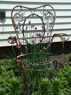 Old wrought iron chair found at a yard sale.looks ok in our garden. Old Chairs, Outdoor Chairs, Outdoor Decor, Garden Junk, Garden Gates, Garden Chairs, Garden Furniture, Wrought Iron Chairs, Grandmas Garden