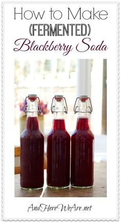 How to Make Fermented Blackberry Soda at Home |  And Here We Are... It's simple, fun, and healthy-- not to mention a great source of probiotics! #homebrewing #soda #blackberries