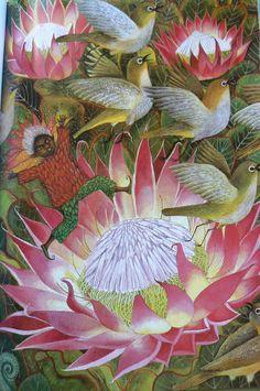 "Fiona Moodie illustration for ""Fynbos Fairies"". Fairy Tea Parties, Tea Party, South African Flowers, Protea Art, Children's Book Illustration, Illustrations, Garden Shop, Plant Species, Little White"