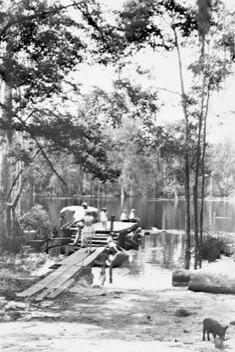 Florida Memory - Diving platform : Wakulla Springs, Florida 1930's