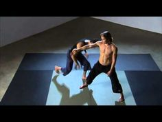 Budokon flow - dancing dog and fighting warrior one. Good video to explain focal points of both poses